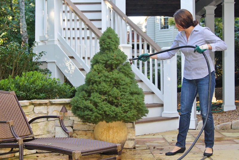 8 Hot Landscaping Trends for 2017
