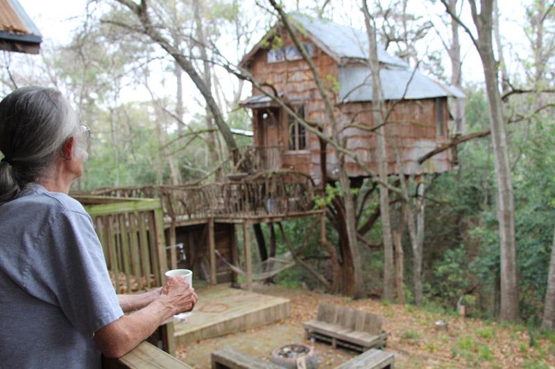 Great Dan Looking At Tree House 2 Small Design