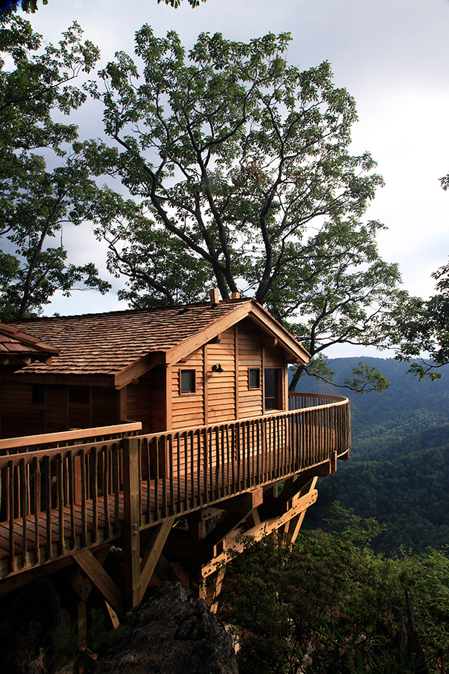 A Treehouse Trio For Grown Ups House Of The Week