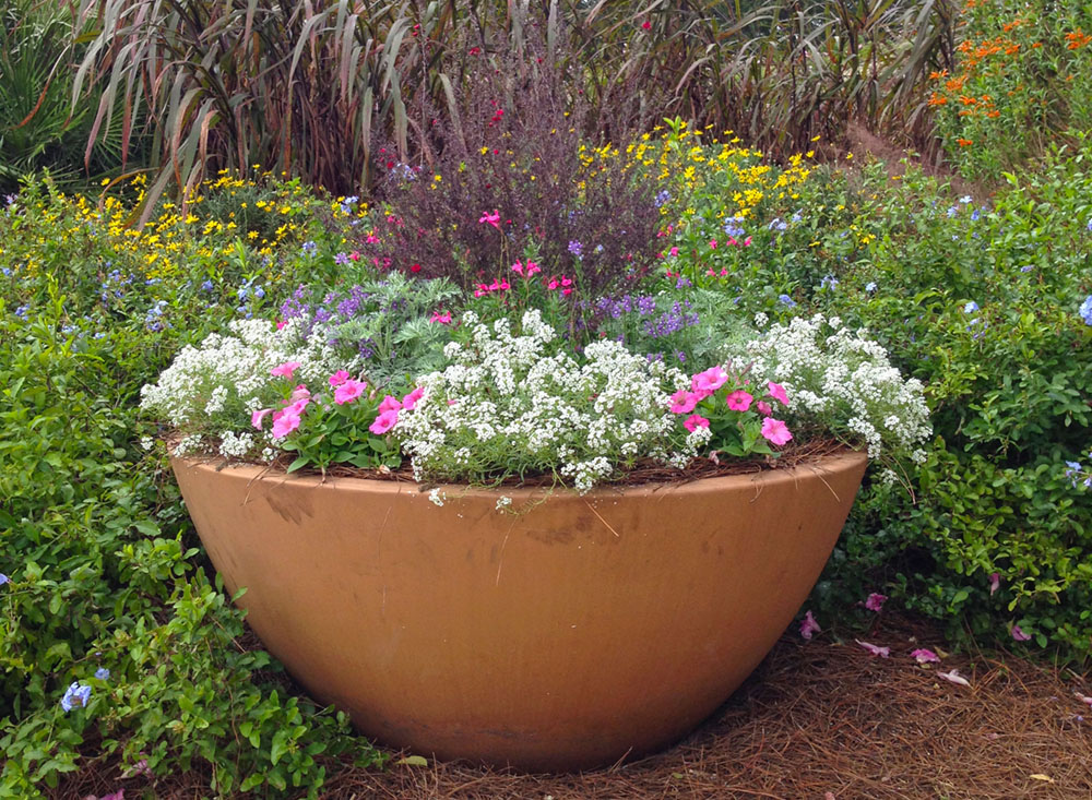 big container combo cropped - Flower Garden Ideas Partial Sun