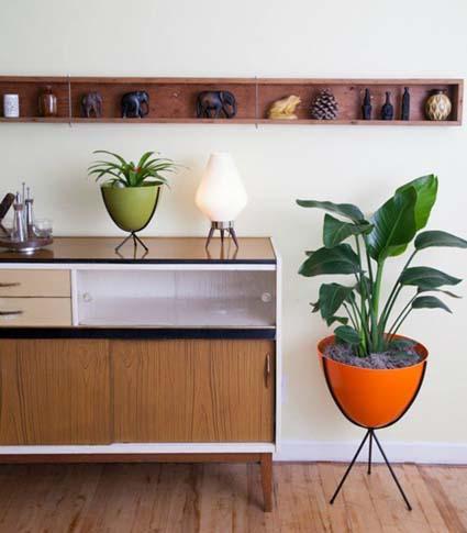 plants and planters - Mid Century Modern Decor