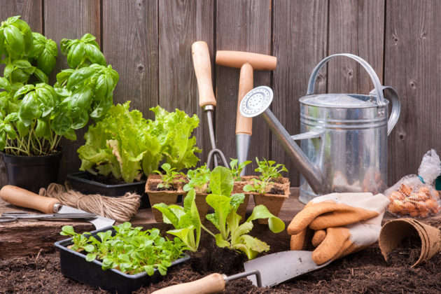 How To Prepare A Vegetable Garden Bed