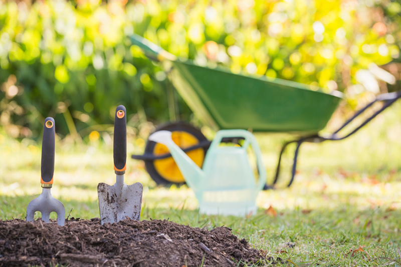 Planning Your Spring Garden 6 Tips for Preparing to Grow Flowers – Spring Garden Planning
