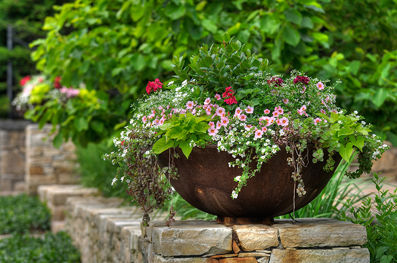 How to Grow a Spectacular Container Garden
