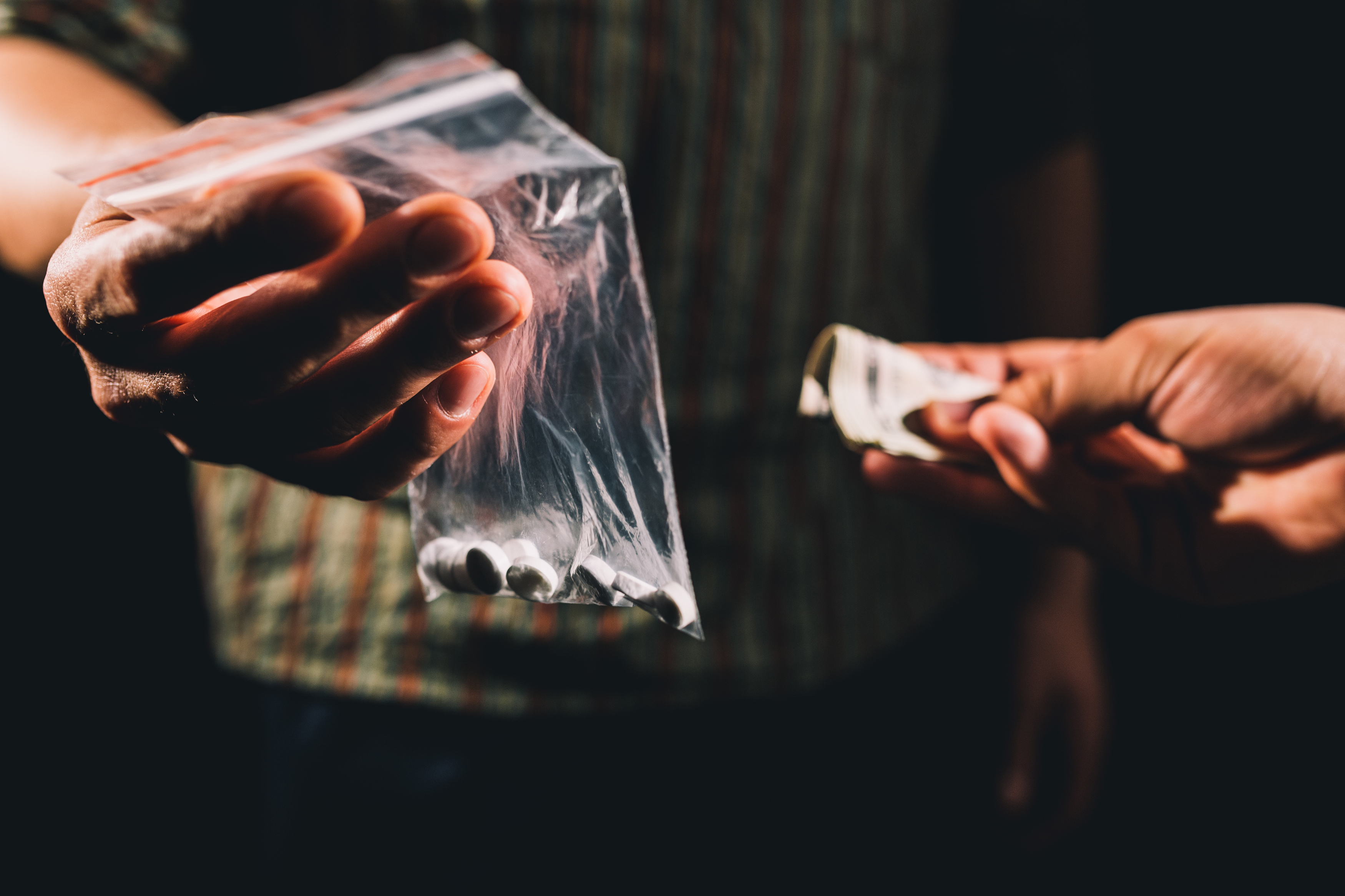 what to do if you suspect illegal drug activity in your rental