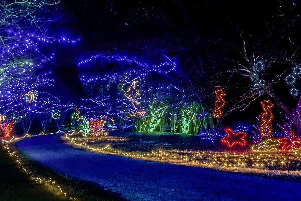 Dominion Garden, Norfolk, VA