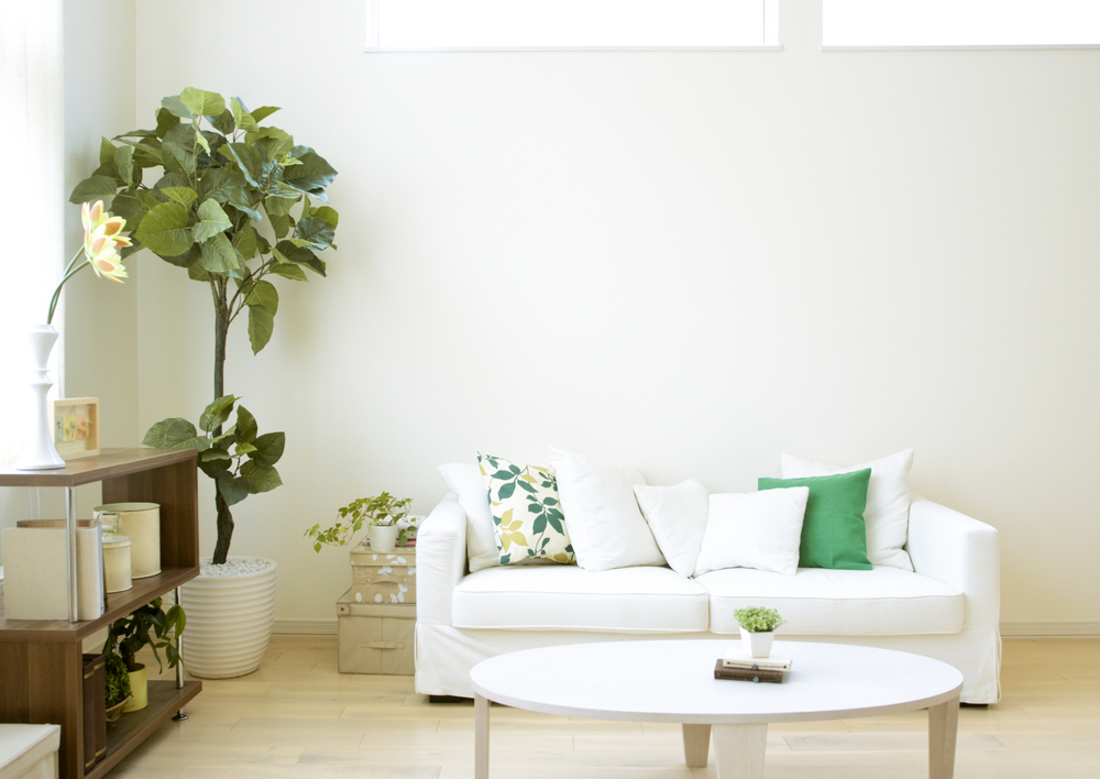 4 Ways To Decorate Your First Apartment On A Budget