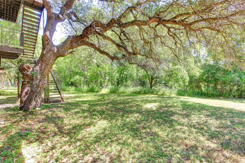 Shade under the trees in Austin, TX.