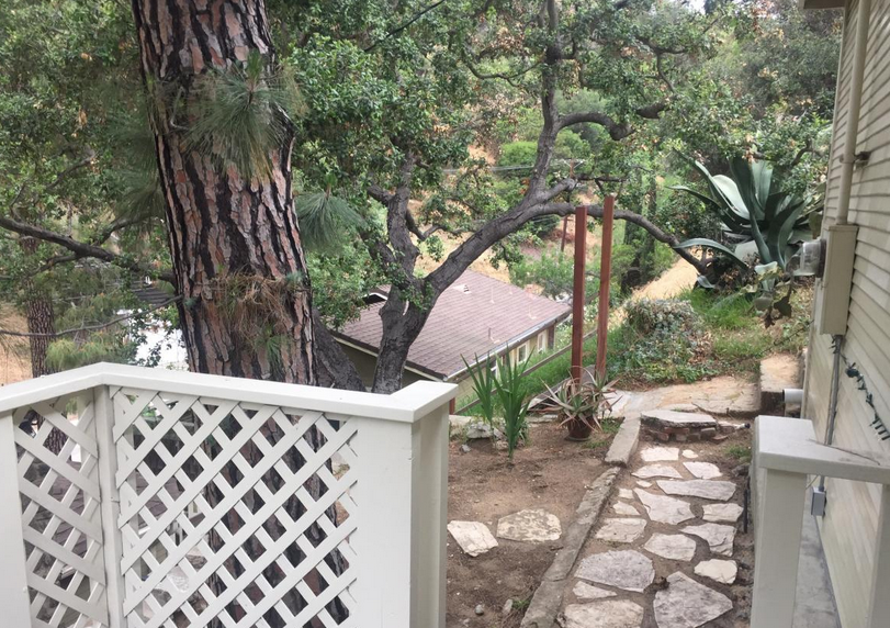 Escape to the trees in Los Angeles.