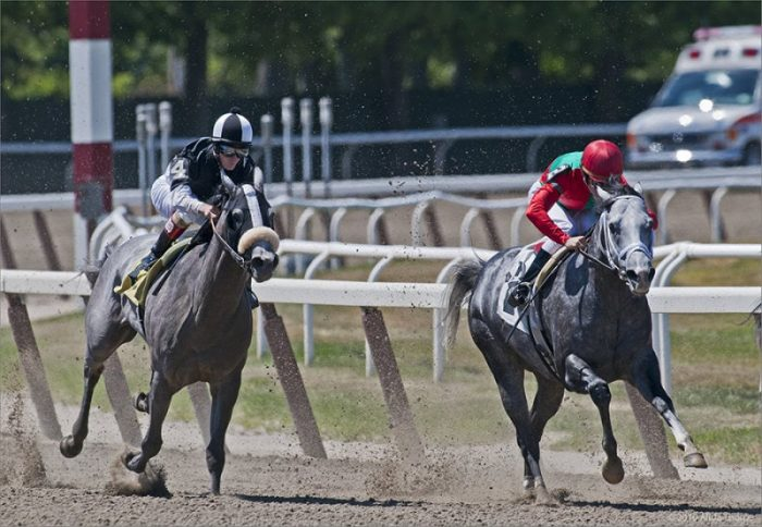 Image of free sporting Events NYC Belmont-Stakes-NYC