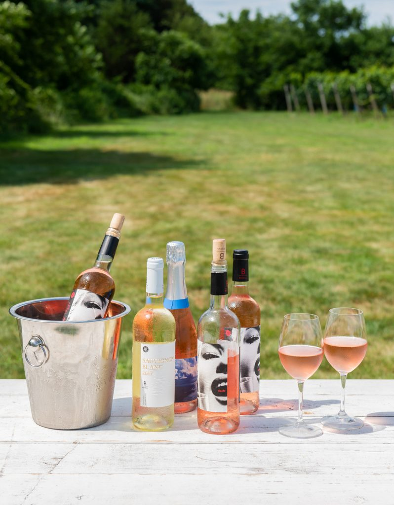 image of summer in the hamptons best rose