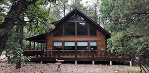 log cabin for sale in Chama NM