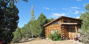 log cabin for sale in questa nm
