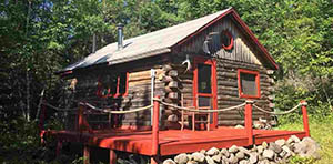 log cabin for sale in tower mn