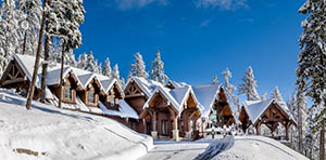 Whitefish Montana home for sale