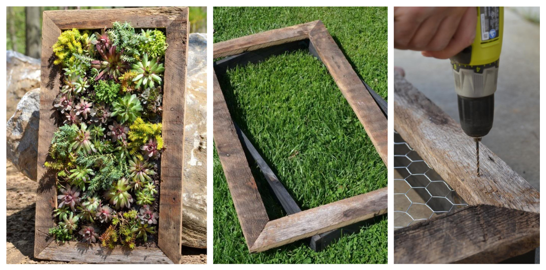 how to build an outdoor plant wall