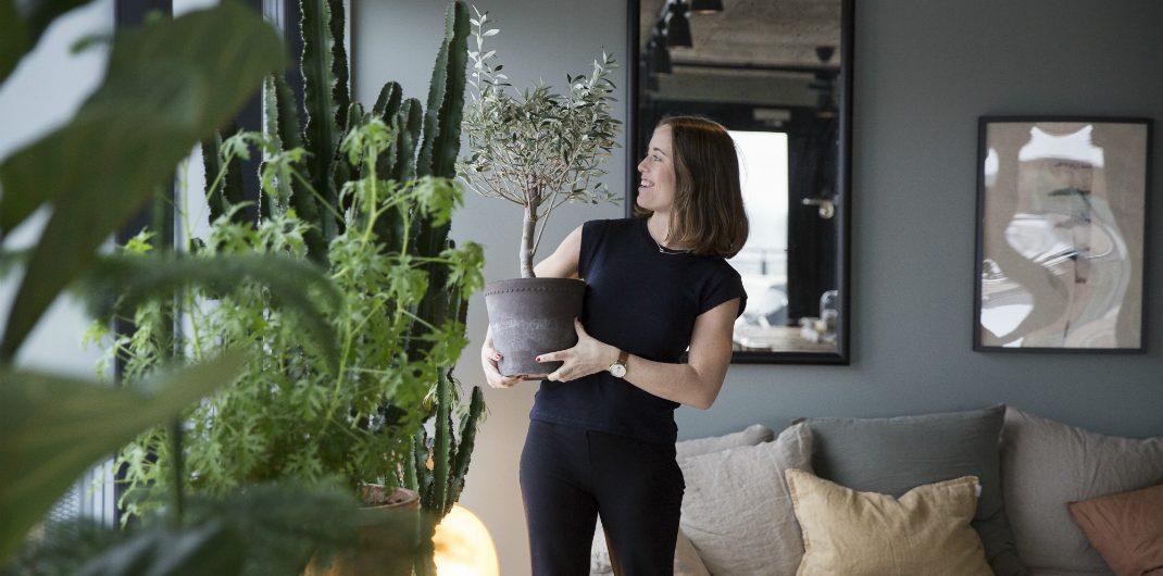 Millennial houseplant trend jungalows house jungles indoor gardening urban jungle