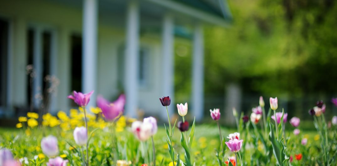 home buying in the spring season