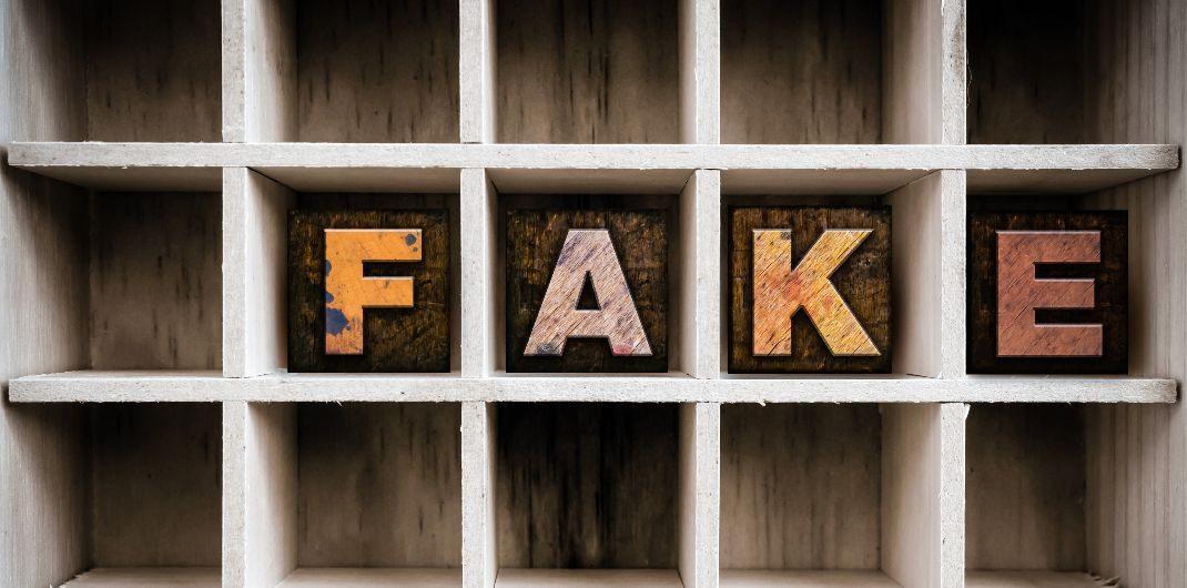 fake credit scores