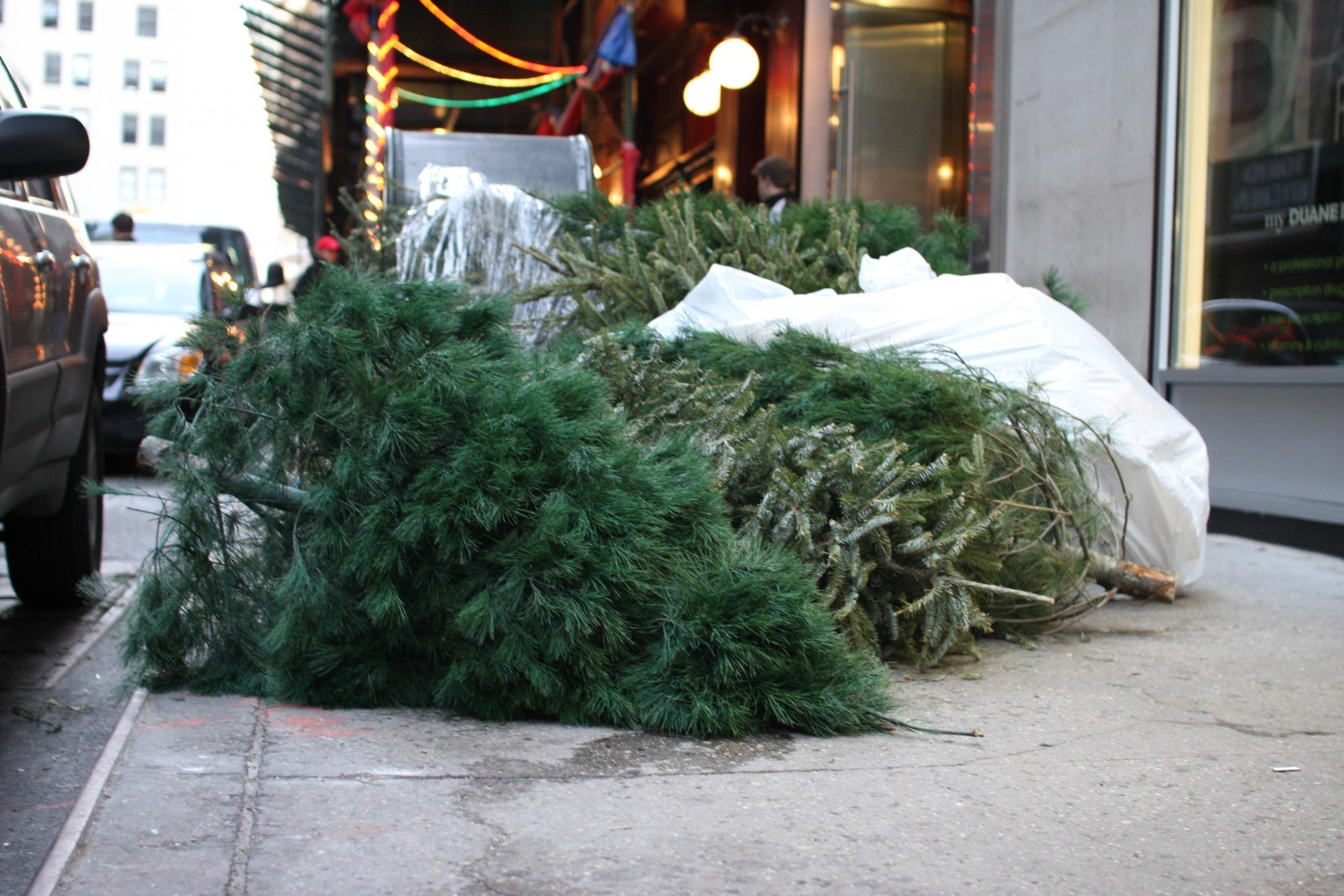 Christmas Tree Disposal.Christmas Tree Disposal Nyc Local To Hassle Free Tree
