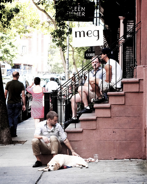 man and dog, people sitting on steps