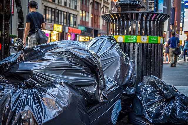 Rats! How to Deal With Your Least Favorite NYC Neighbor | StreetEasy