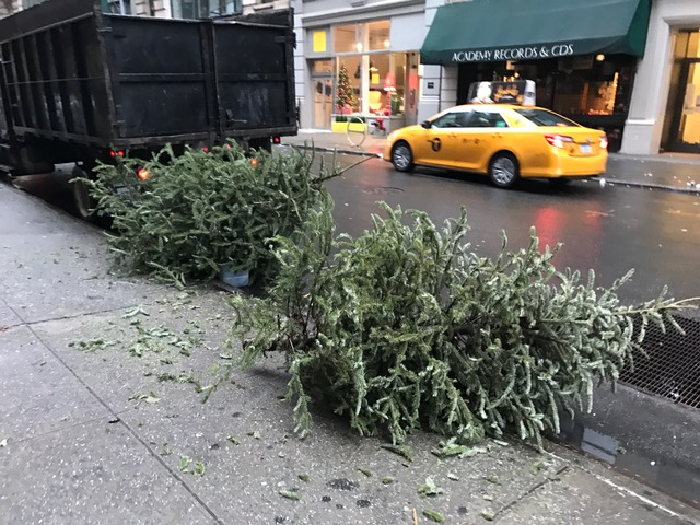 Christmas Tree Disposal Nyc