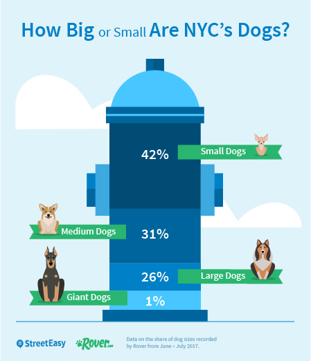 Most Dog Friendly Neighborhoods Nyc