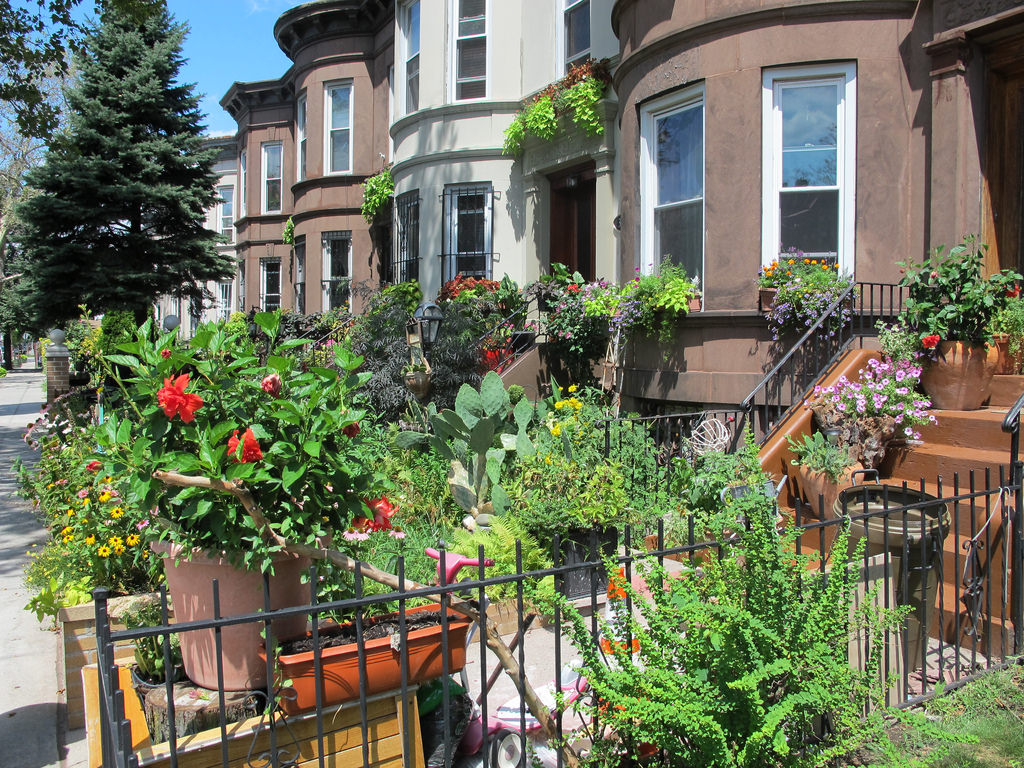 Brooklyn S Greenest Block See The Best Window Boxes And