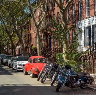 New Roots In Carroll Gardens The York Times