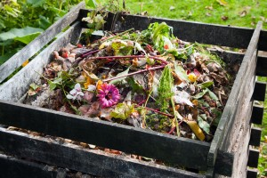 learntocompost