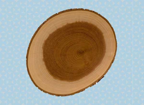 Feb2015-Trulia-Housewarming-Gifts-Cutting-Board-600x440