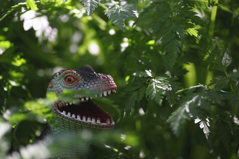 dinosaur in grass
