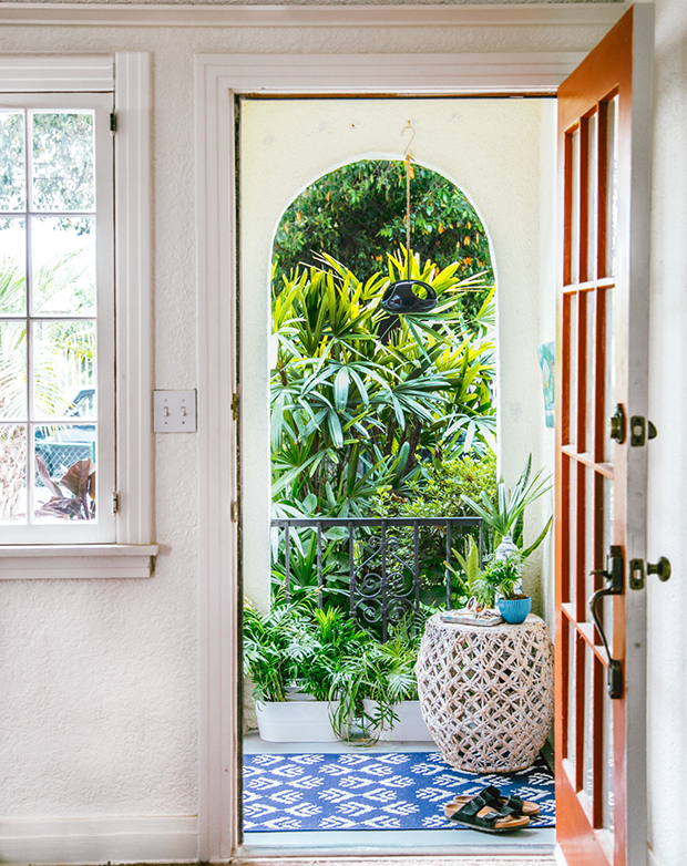 Plants near front door for good energy