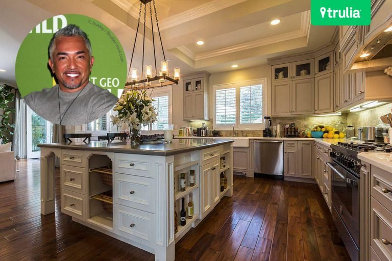 Cesar Millan Lists Home For Sale Studio City CA